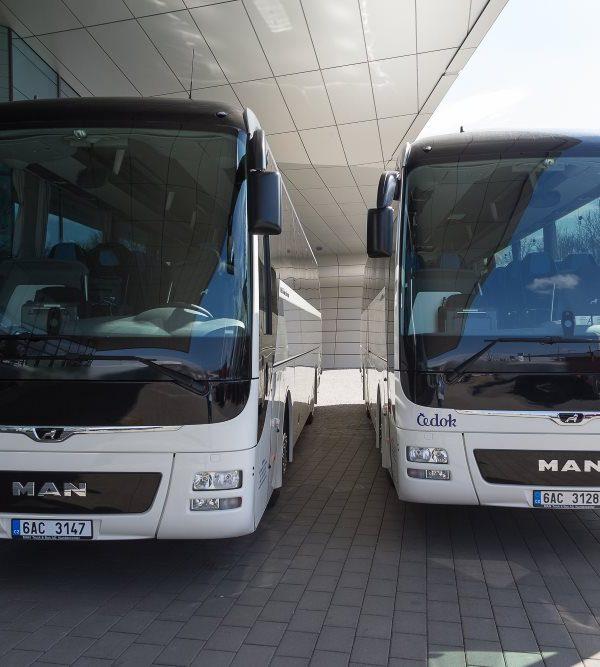 autobusy čedoku