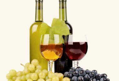 srovnávač vín